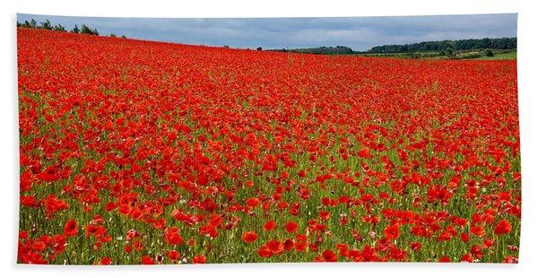 Nottinghamshire Poppy Field Hand Towel