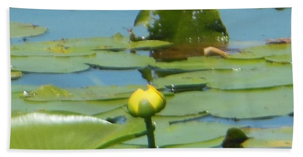Nuphar Lutea Yellow Pond Hand Towel