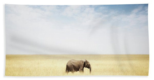 One Elephant Walking In Grass In Africa Hand Towel