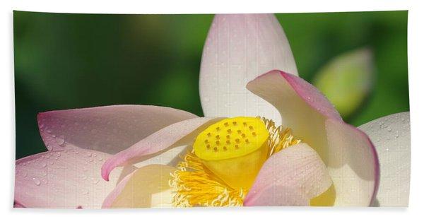 Open Lotus Hand Towel