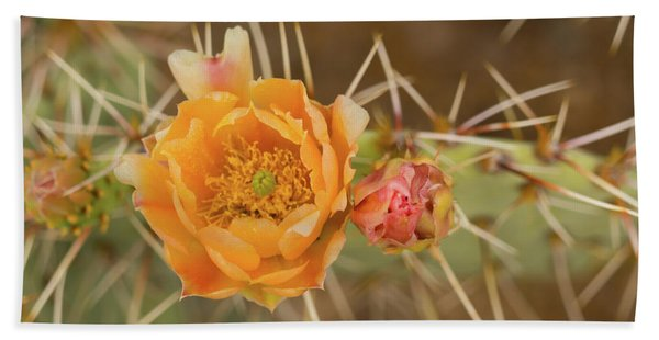Orange Cactus Bloom Saguaro National Park Arizona Bath Towel