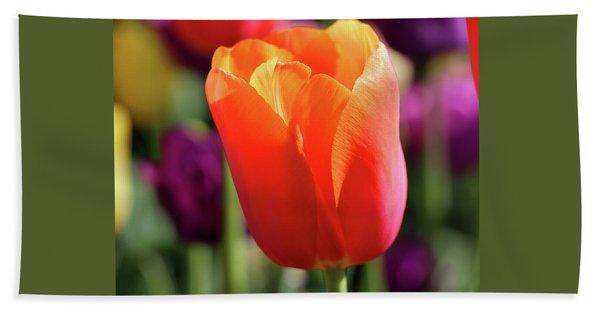 Orange Tulip Square Hand Towel