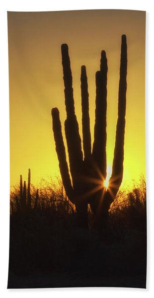 Organ Pipe Cactus Hand Towel