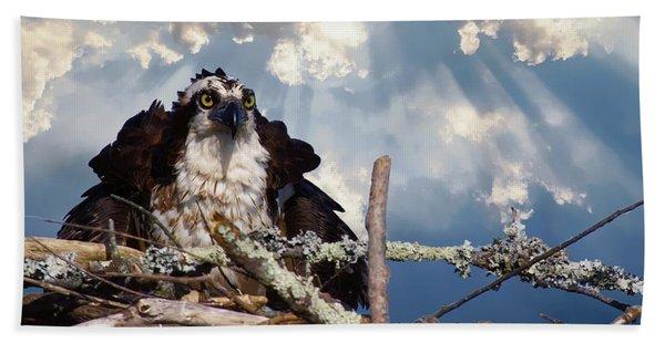 Osprey Angry Hand Towel