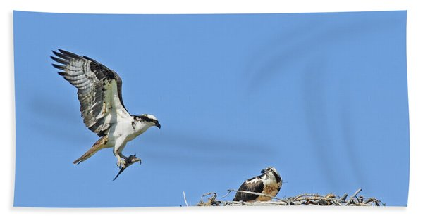 Osprey Brings Fish To Nest Bath Towel