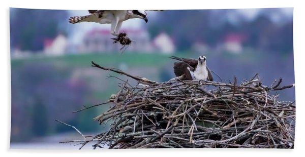 Osprey Nest Building Bath Towel