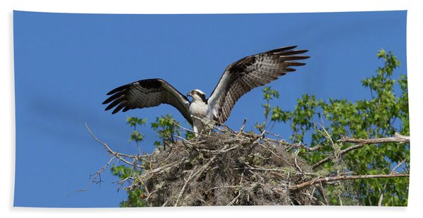 Osprey On Nest Wings Held High Bath Towel