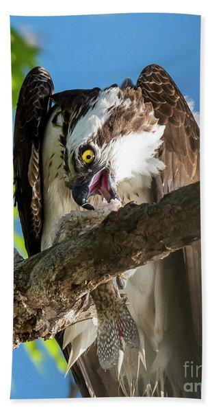 Osprey With Prey Bath Towel