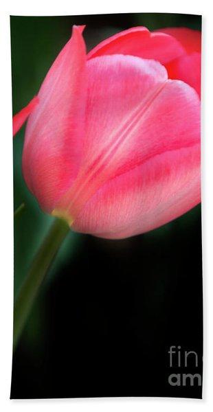 Pastel Tulips Bath Towel
