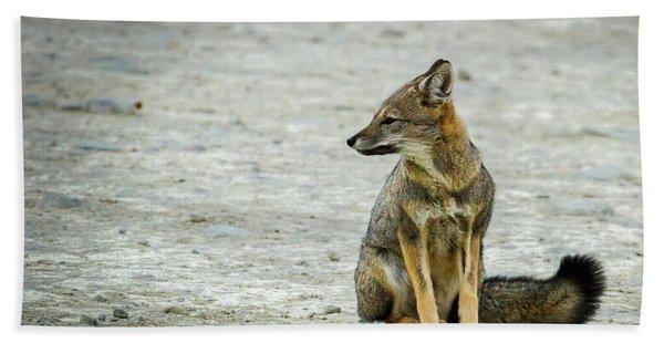 Patagonia Fox - Argentina Hand Towel