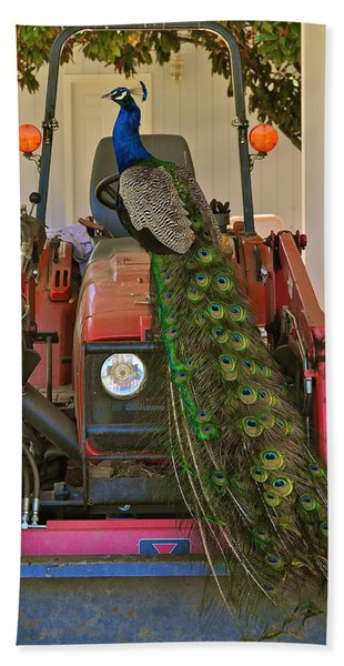 Peacock And His Ride Hand Towel