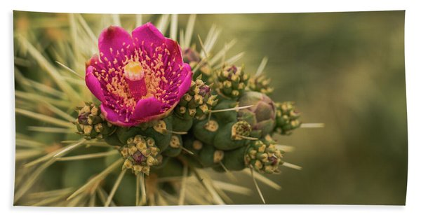 Pink Cactus Bloom Saguaro National Park Arizona Bath Towel