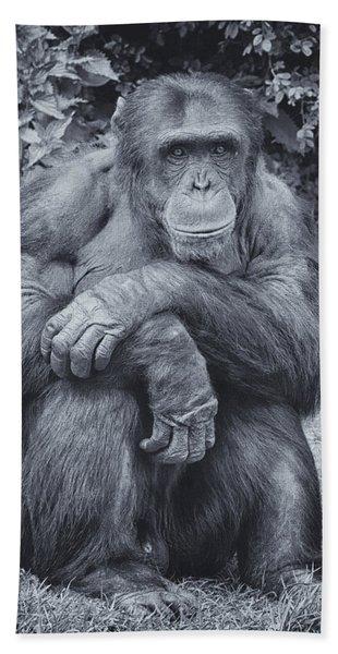 Portrait Of A Chimp Hand Towel