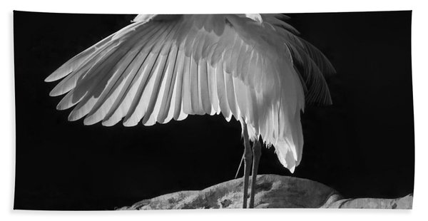 Preening Great Egret By H H Photography Of Florida Hand Towel