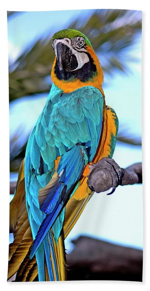 Bath Towel featuring the photograph Pretty Parrot by Carolyn Marshall