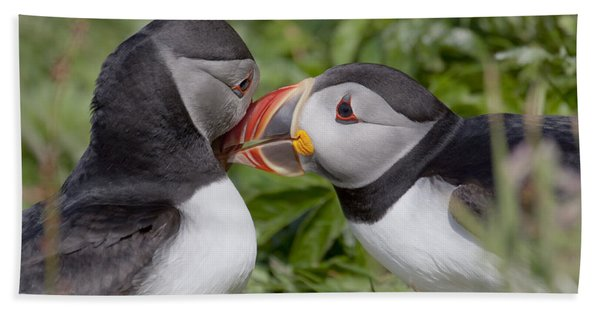 Puffin Love Hand Towel