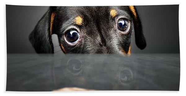 Puppy Longing For A Treat Bath Towel