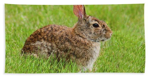 Rabbit In A Grassy Meadow Bath Towel