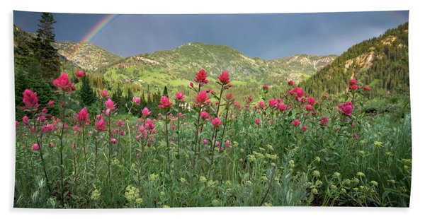 Hand Towel featuring the photograph Rainbow And Wildflowers by James Udall