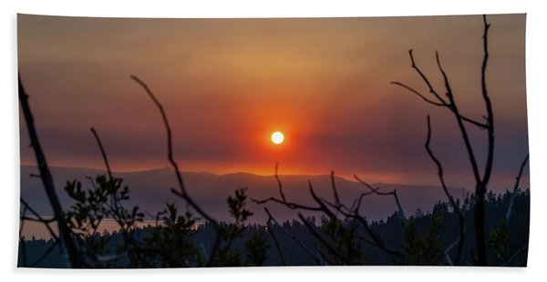 Reaching For The Sun Hand Towel