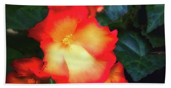 Red  And Yellow Hand Towel