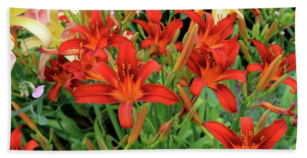 Red Daylilies Hand Towel