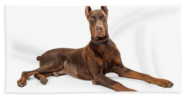 Red Doberman Pinscher Dog Lying Profile Hand Towel