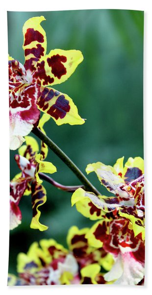 Striped Maroon And Yellow Orchid Hand Towel