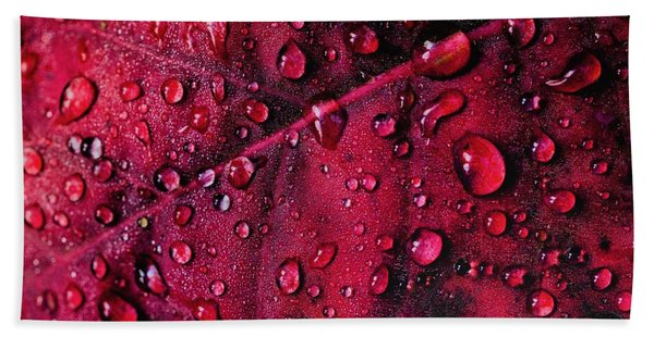 Red Morning Bath Towel