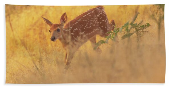 Hand Towel featuring the photograph Running In Sunlight by John De Bord