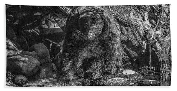 Salmon Seeker Black Bear  Hand Towel