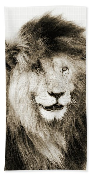 Scar Lion Closeup Square Sepia Hand Towel
