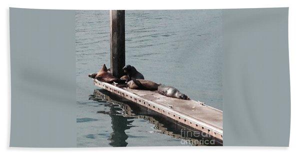 Seals At Oceanside Bath Towel