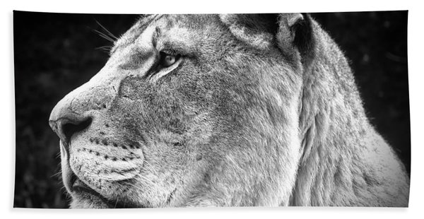 Silver Lioness  Hand Towel
