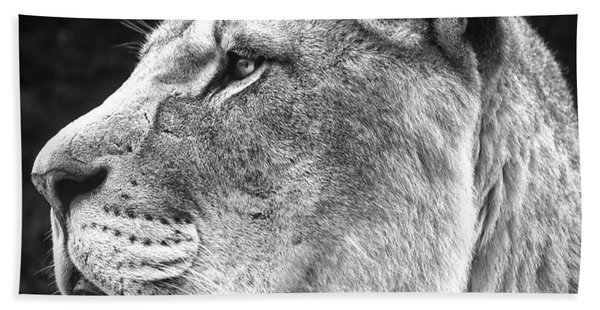 Silver Lioness - Squareformat Hand Towel
