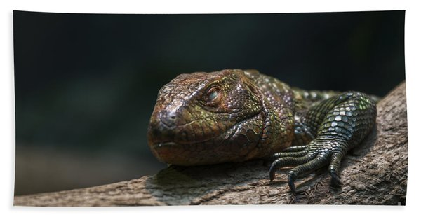 Sleeping Dragon Hand Towel