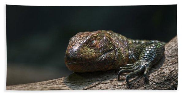 Sleeping Dragon Bath Towel