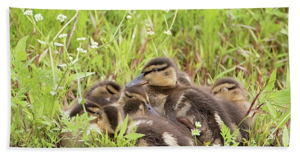 Sleepy Ducklings Hand Towel