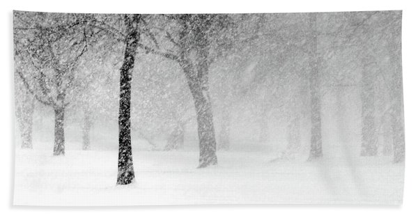 Snow Storm At Starved Rock Hand Towel