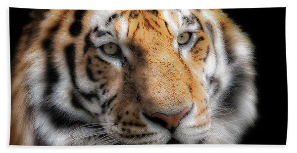 Soft Tiger Portrait Hand Towel