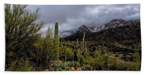 Sonoran Winter No.1 Hand Towel