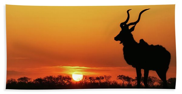 South Africa Sunset Kudu Silhouette Hand Towel
