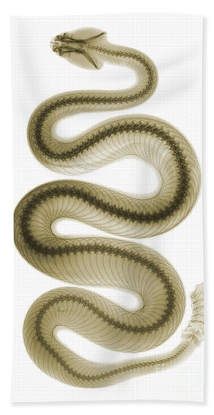 Southern Pacific Rattlesnake, X-ray Bath Towel