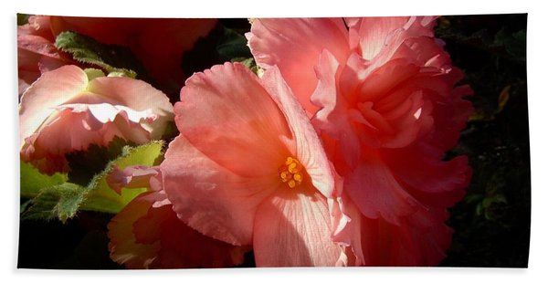 Splash Of Begonia Hand Towel