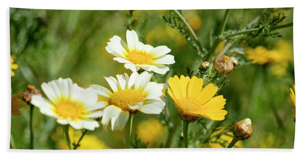 Spring Daisies Hand Towel