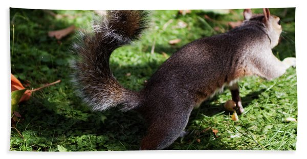 Squirrel Running Hand Towel