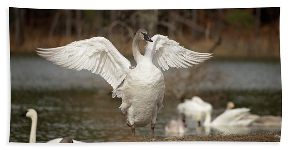 Stretch Your Wings Bath Towel
