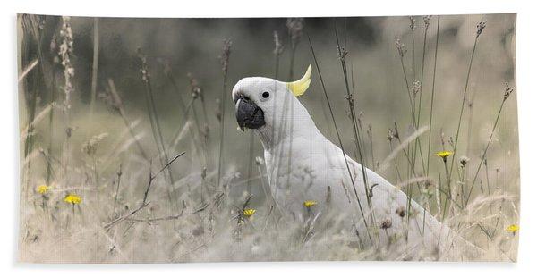 Sulphur Crested Cockatoo Hand Towel