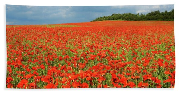 Summer Poppies In England Hand Towel