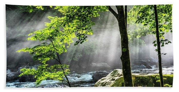 Sun Rays On Williams River  Hand Towel